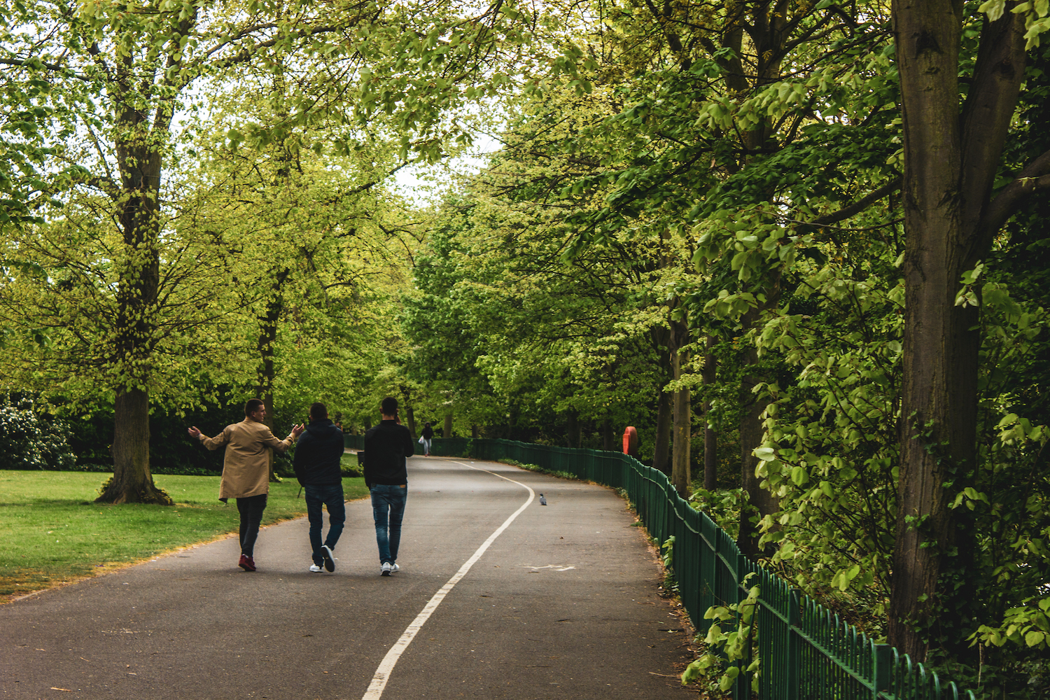 Professional Photography Three Asian Men Walk On Park Path Talking Surrounded By Green Trees